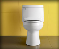 Toilet Options- Bathroom Remodeling in Gaithersburg MD