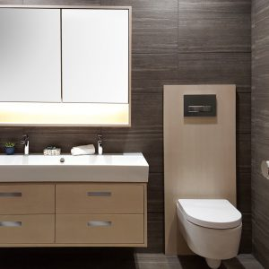 Toilets for bathroom remodeling gaithersburg md wellman - Bathroom remodeling gaithersburg md ...